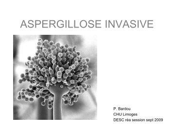 Aspergillose invasive : épidémiologie, diagnostic et traitement.