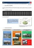 Informe Mensual mayo (Explotación) - Page 4