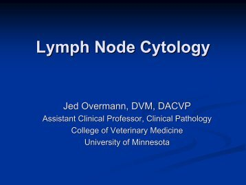 Lymph Node Cytology - American Society for Veterinary Clinical ...