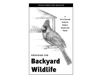 Providing for Backyard Wildlife - The State of Water