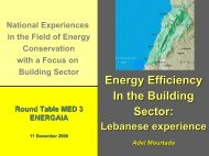 Sustainable Energy Strategy for Lebanon - Euromedina