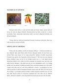 kimya proje raporu doğal sulu boya yapımı grup renkler - Page 4