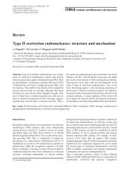 Review Type II restriction endonucleases: structure and ... - 2009 iGEM