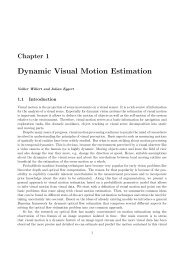 Dynamic Visual Motion Estimation