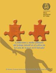 Condiciones y medio ambiente del trabajo infantil en la caña de ...