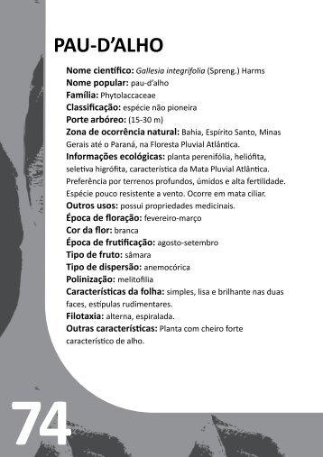 PAU-D'ALHO - rio.rj.gov.br