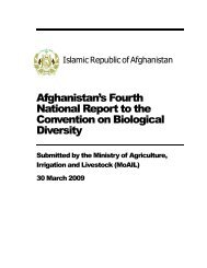 Afghanistan's Fourth National Report to the Convention on ...