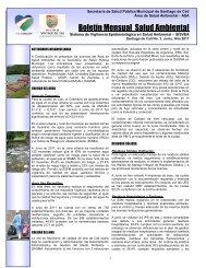 Boletín Mensual Salud Ambiental Junio 2011 - CaliSaludable.gov.co