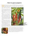 Master Gardener News - Yakima County - Page 4