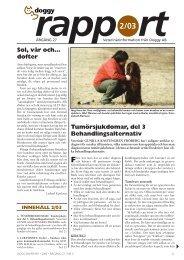 Tumörsjukdomar, del 3 Behandlingsalternativ Sol ... - Doggy Rapport
