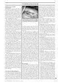 Tumörsjukdomar, del 3 Behandlingsalternativ Sol ... - Doggy Rapport - Page 3