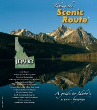 A Guide to Idaho's Scenic Byways [27 MB]