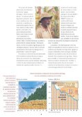 El CIMMYT en 1994 - Search CIMMYT repository - Page 6