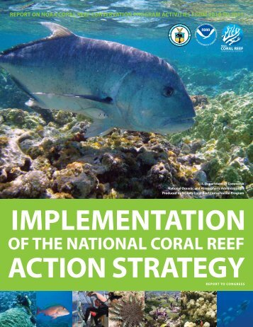 Report on NOAA Coral Reef Conservation Program Activities