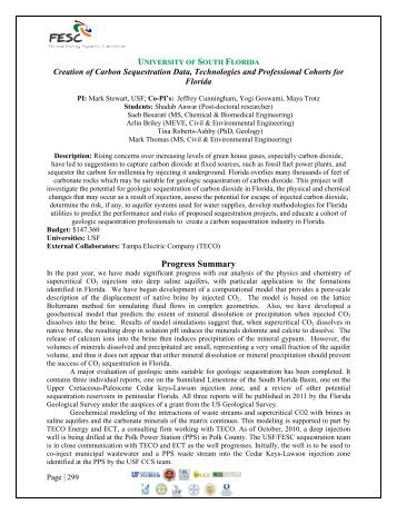 November 2010 Annual Report - Florida Energy Systems Consortium