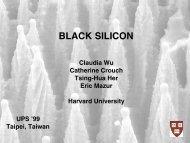 BLACK SILICON - Harvard University