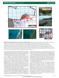 Complex rupture during the 12 January 2010 Haiti earthquake - Page 3