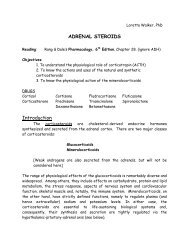 ADRENAL STEROIDS Introduction