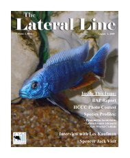 Lateral Line August 2005.pub - Hill Country Cichlid Club