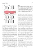 Calsarcin-2 deficiency increases exercise capacity in mice through ... - Page 3