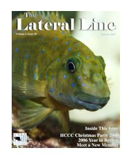 Lateral Line January 2007.pub - Hill Country Cichlid Club