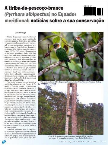 A tiriba-do pescoço-branco (Pyrrhura albipectus) - Atualidades ...