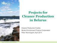 Projects for cleaner production in Belarus, Peter Henningsen ... - Nefco