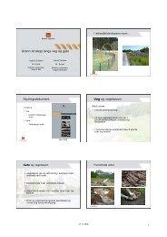 Grønn strategi langs veg og gate Styringsdokument Veg og ... - FAGUS