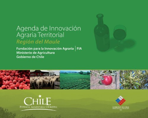 Agenda de Innovación Agraria Territorial de la Región del Maule - Fia