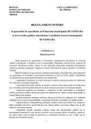 Regulament intern Primarie 2011.pdf - Primaria Municipiului ...