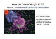 Tema 1 Sistema Inmune B2010 - Facultad de Ciencias