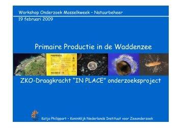 Primaire Productie in de Waddenzee
