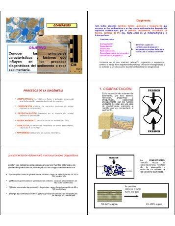(Diag).pdf