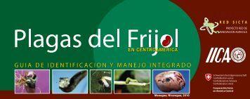 plagas del frijol en Centroamérica - Red SICTA