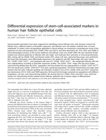 Differential expression of stem-cell-associated markers in human ...