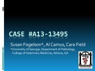 Case #A13-13495 - University of Georgia College of Veterinary ...