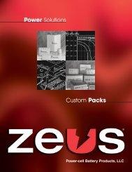 Custom Packs Power Solutions - ZEUS Battery