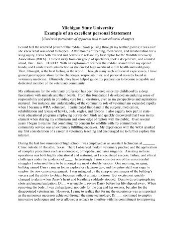 Michigan State University Example Of An Excellent Personal Statement  Example Personal Statements
