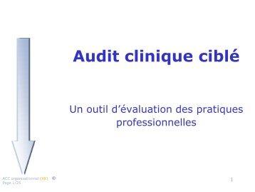 rapport d'Audit Clinique Ciblé