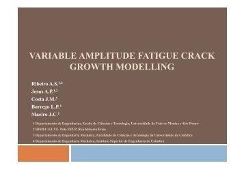 variable amplitude fatigue crack growth modelling - Universidade de ...