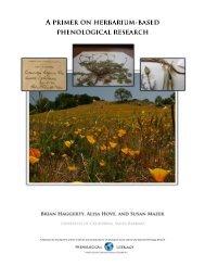Herbarium-based phenological research - USA National Phenology ...