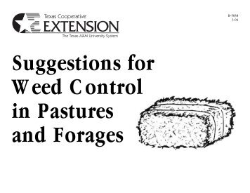 Suggestions for Weed Control in Pastures and ... - Texas Forages