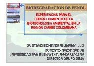 biotecnología en degradación de fenoles.