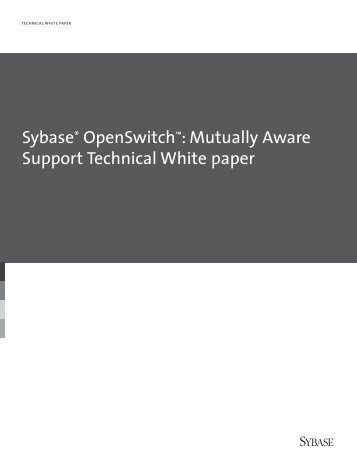 Sybase OpenSwitch: Mutually Aware Support Technical White paper