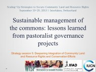 Sustainable management of the commons - Rights and Resources ...
