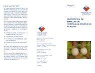 Producción de semillas de hortalizas orgánicas - Fia