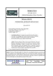MobileMAN domain modelling - Cnr