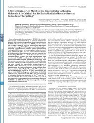 A Novel Serine-rich Motif in the Intercellular Adhesion Molecule 3 Is ...
