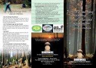Unser Flyer - allgemeingültig für den Bayerwald und den ... - Dobernigl