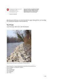 Teil F: Flüsse - Planat